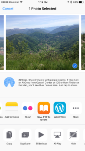 Select any image and tap on the WordPress icon.